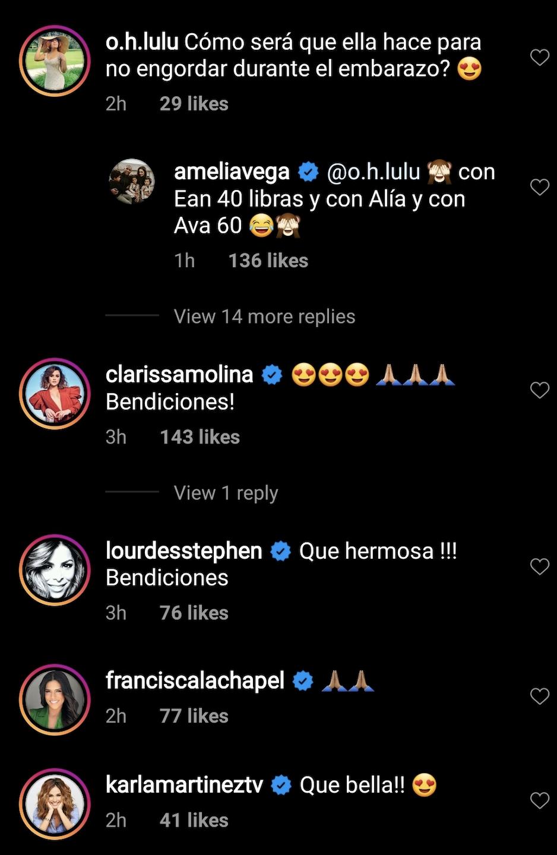 Comentarios a Amelia Vega