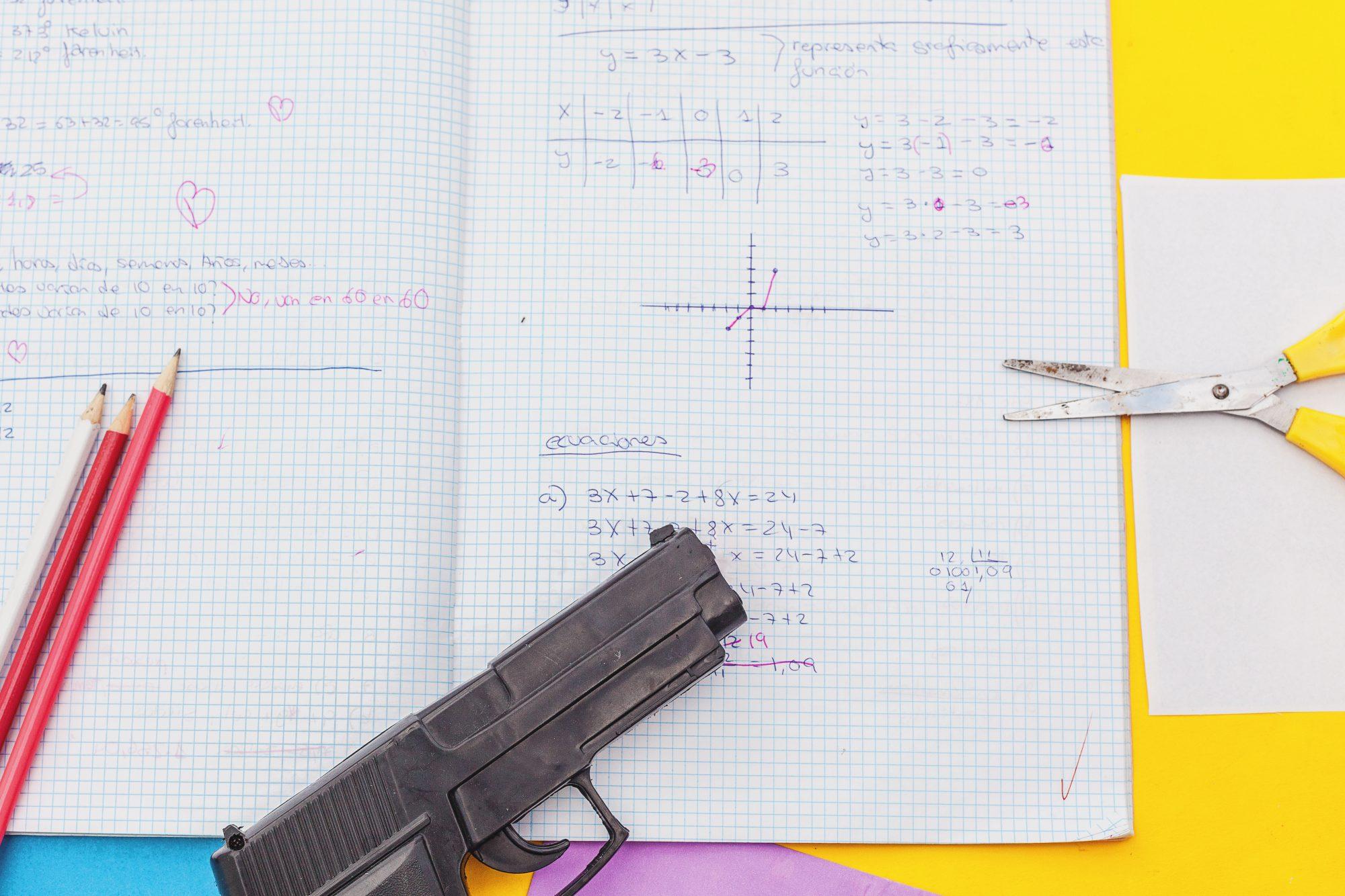 gun control school