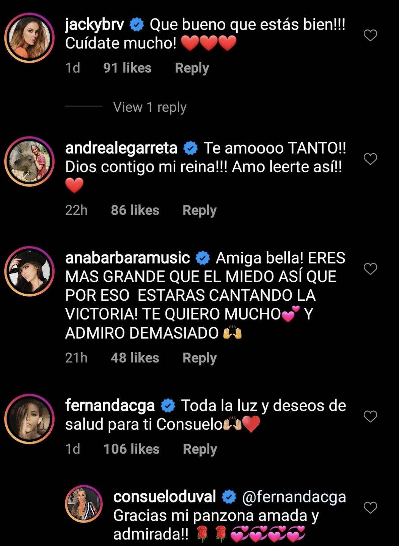 Comentarios a Consuelo Duval