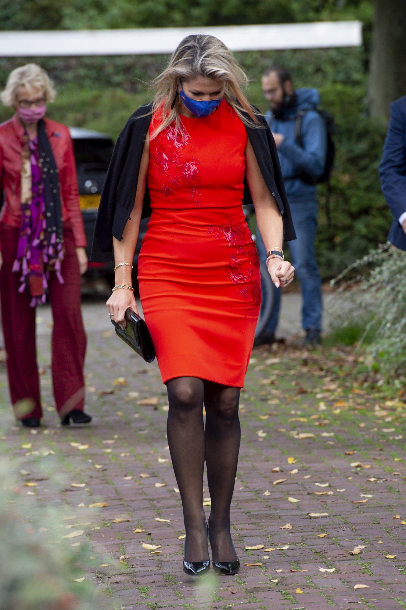 Reina Maxima, look, elegante, otoño