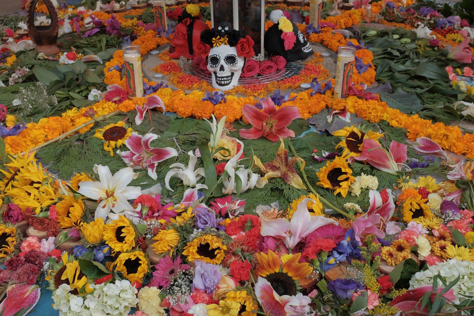 Dia De Los Muertos Oakland 2016