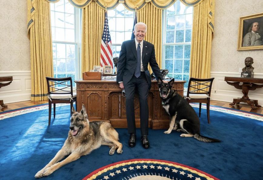 Joe Biden y sus mascotas: Major y Champ
