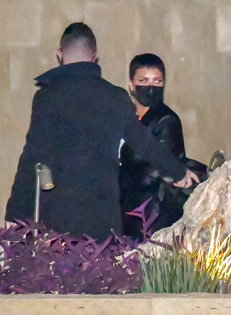 Demi Lovato Shows Off Her Newly Dyed Black Hair While Out To Dinner