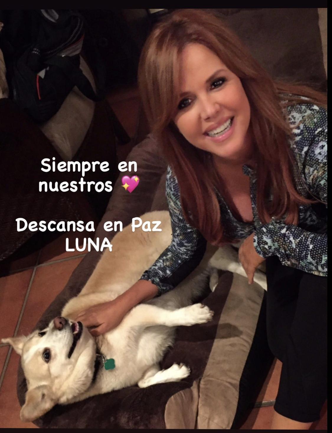 María Celeste Arrarás perrita Luna