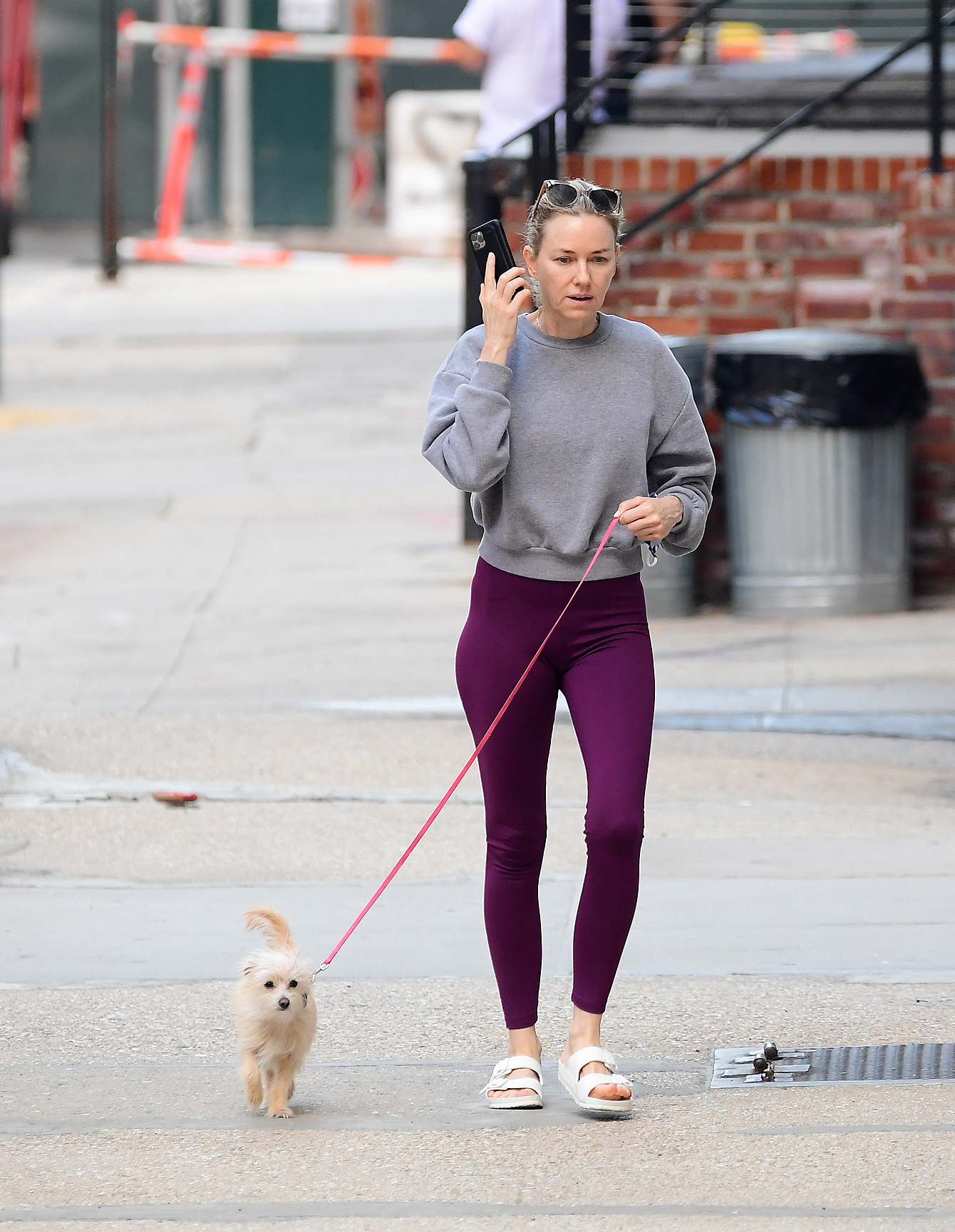 A Makeup Free Naomi Watts Steps Out For a Dog Walk in New York City