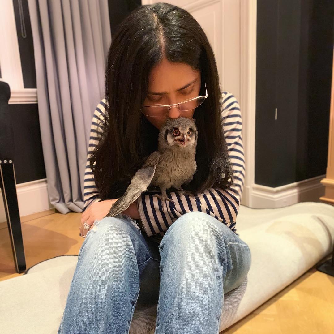 Salma Hayek y y su búho mascota Kering