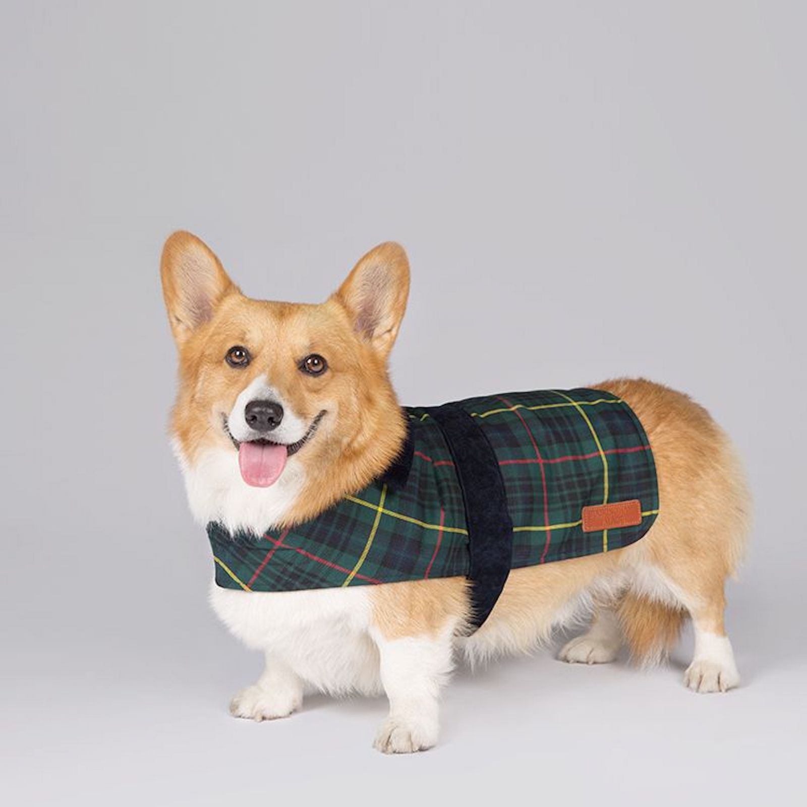 Royal Collection Pet Gifts