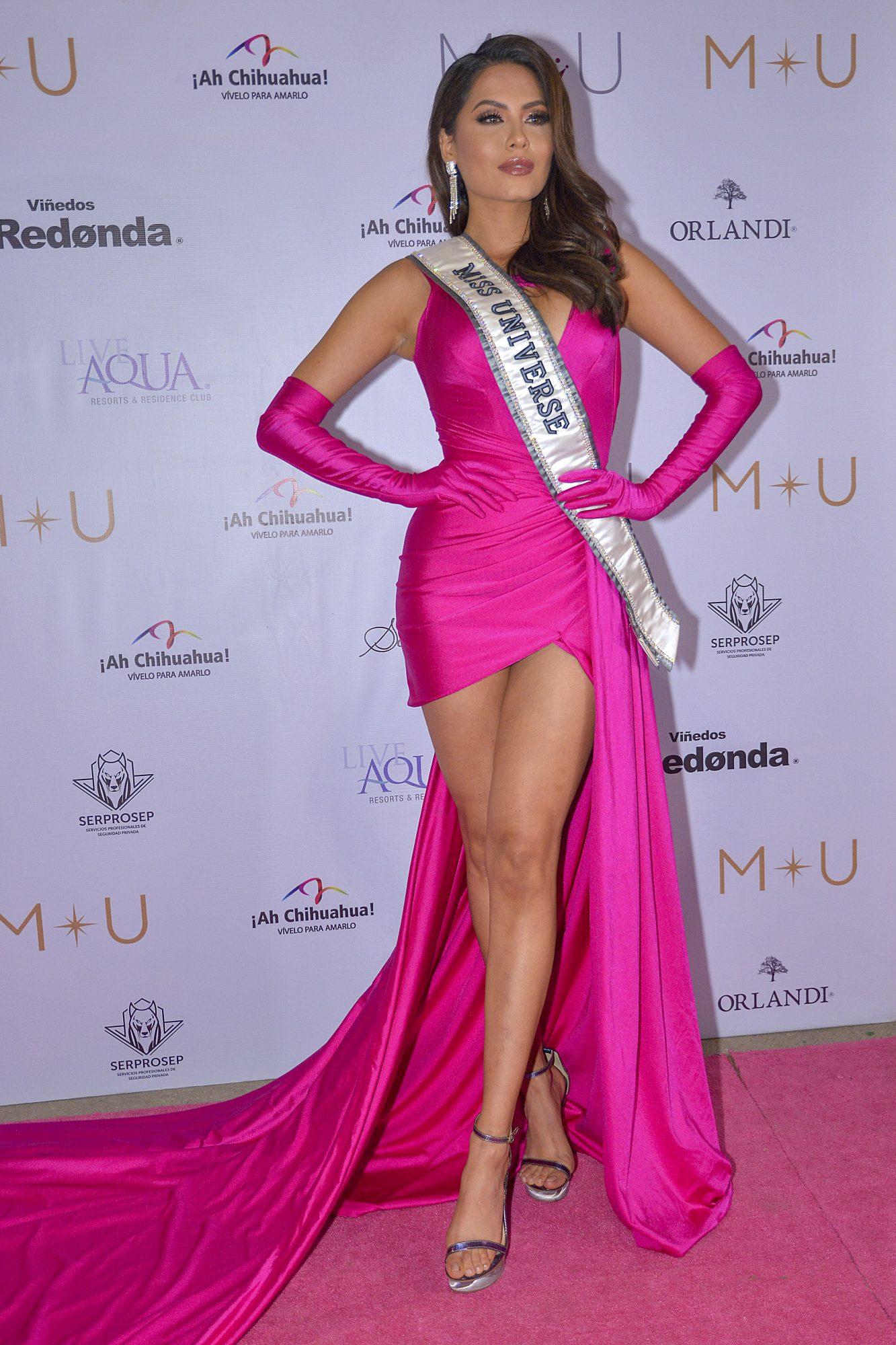 Andrea Meza, look del dia, vestido fuscsia en Mexico
