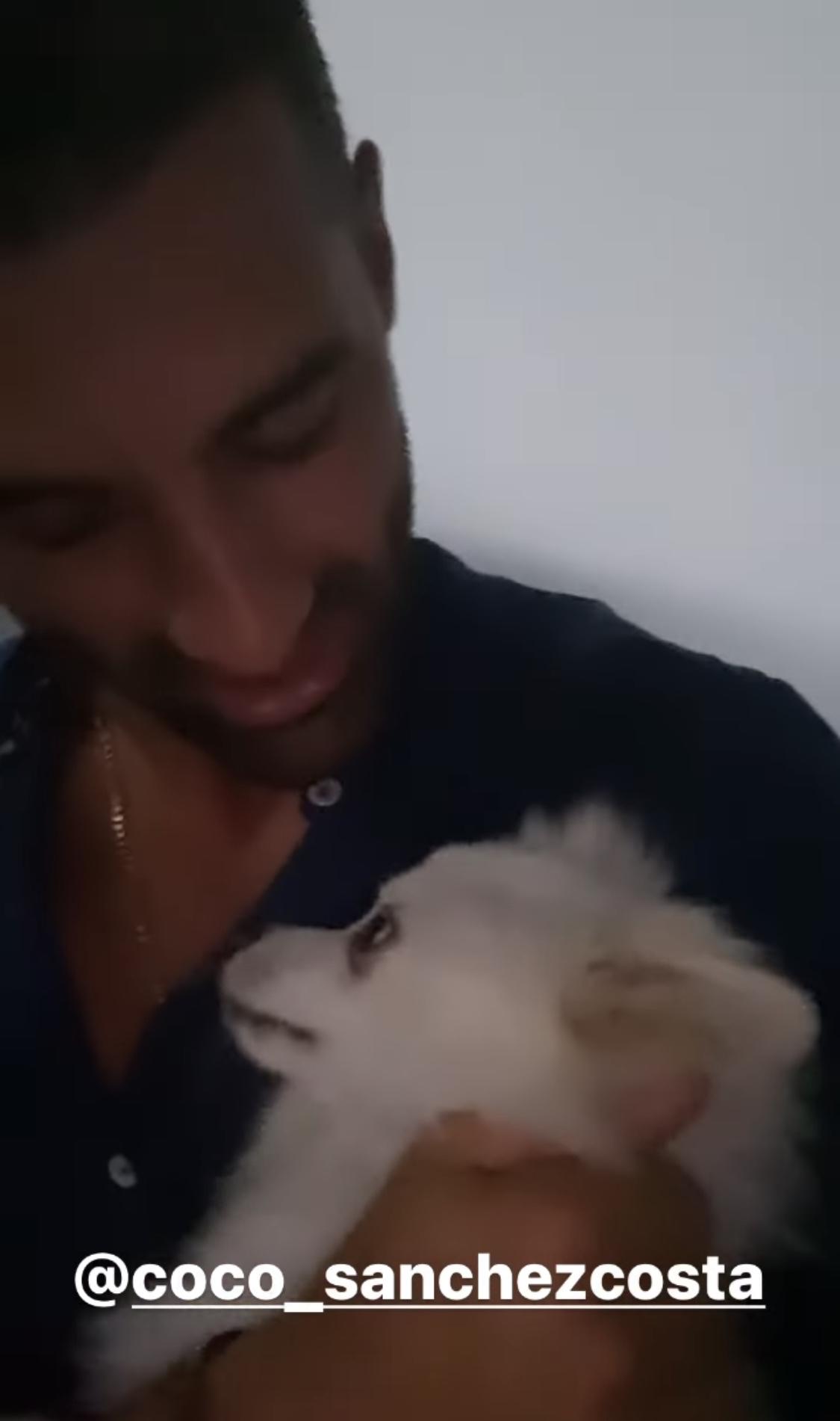 Toni Costa perro