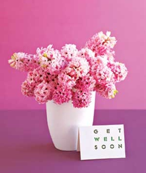 Pink flowers with a get-well card