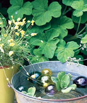 Create an Outdoor Water Garden
