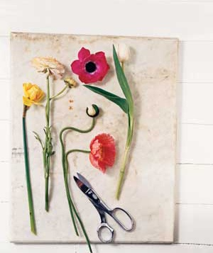 Tulips, daffodils, ranunculus, poppies, and anemones