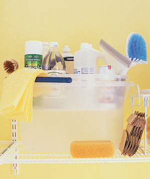 Cleaning products stored in a bucket's caddy