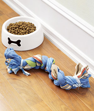 A dog bowl and toy
