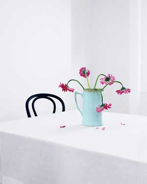 Pink flowers in a white room