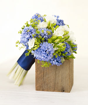 Bouquet of blue hyacinth