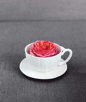 Flower in a cup.