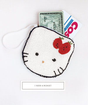 A purse and credit cards