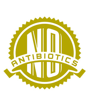 No antibiotics label