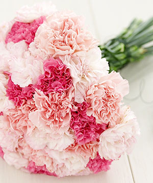 How to Transform Carnations