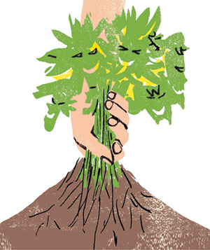 Illustration of a woman pulling weeds