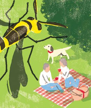 Illustration of a wasp invading a picnic