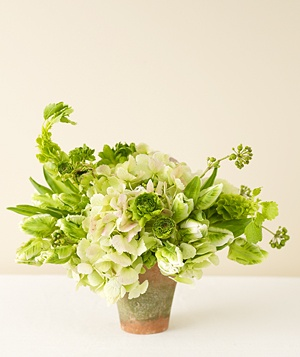 Centerpiece of green hydrangea