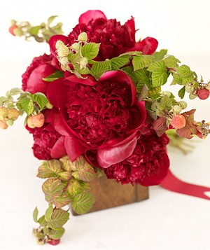 Bouquet of red peonies