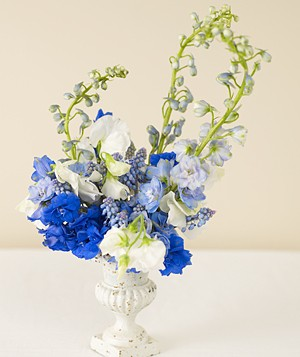 Centerpiece of blue delphiniums