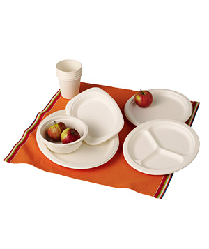 Branch Home biodegradable plates, bowls and cups