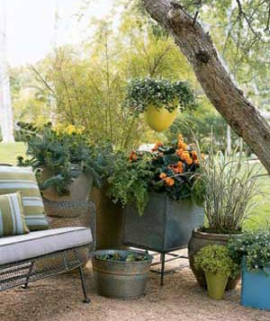 Create an oasis in your yard by arranging potted plants into a sheltering screen.