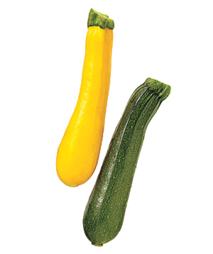 Zucchini and yellow squash
