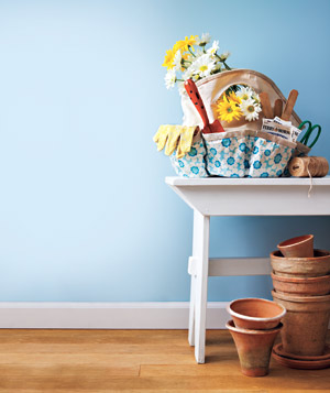 Blue wall with gardening supplies on a white table