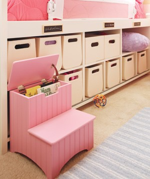 Step ladder and cubbies