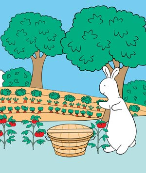 Pat the Bunny, written and illustrated by Dorothy Kunhardt