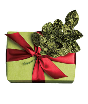 Gift wrapped in green paper with velvet leaves