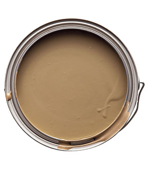 Paint from Glidden in Gentle Fawn