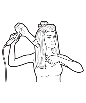 Predry and section hair illustration