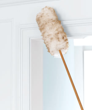 Duster on door molding