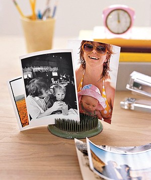 Photos displayed with a flower frog