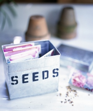 Seeds and gardening supplies