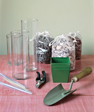 Gather items for Rock centerpiece