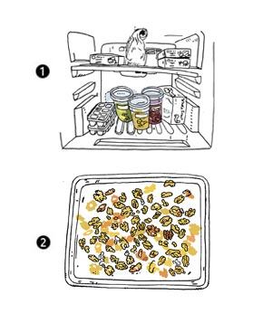 Illustration of inside of freezer and nuts on a baking tray