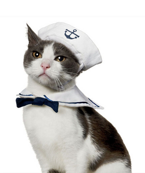 Sailor Halloween Costume