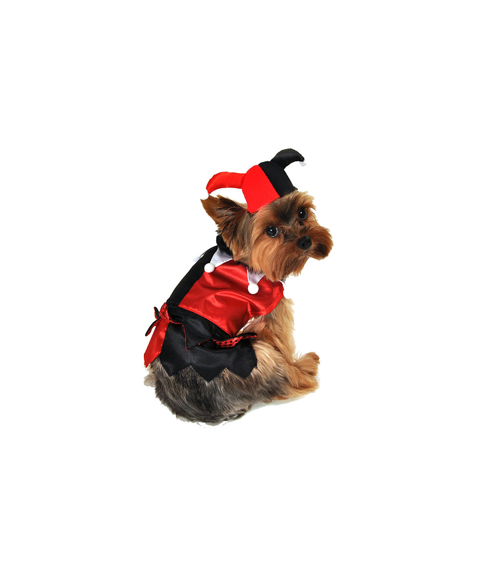 Jester Dog Costume