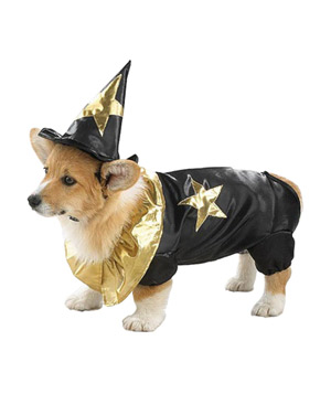 Woof Wizard Costume