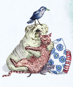 Dog bird and cat hugging illo