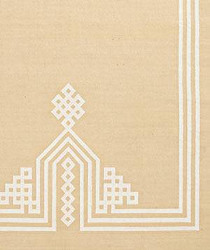 Gobi Frame rug by Serena And Lilly