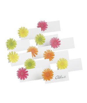 Gerber Daisy Placecards