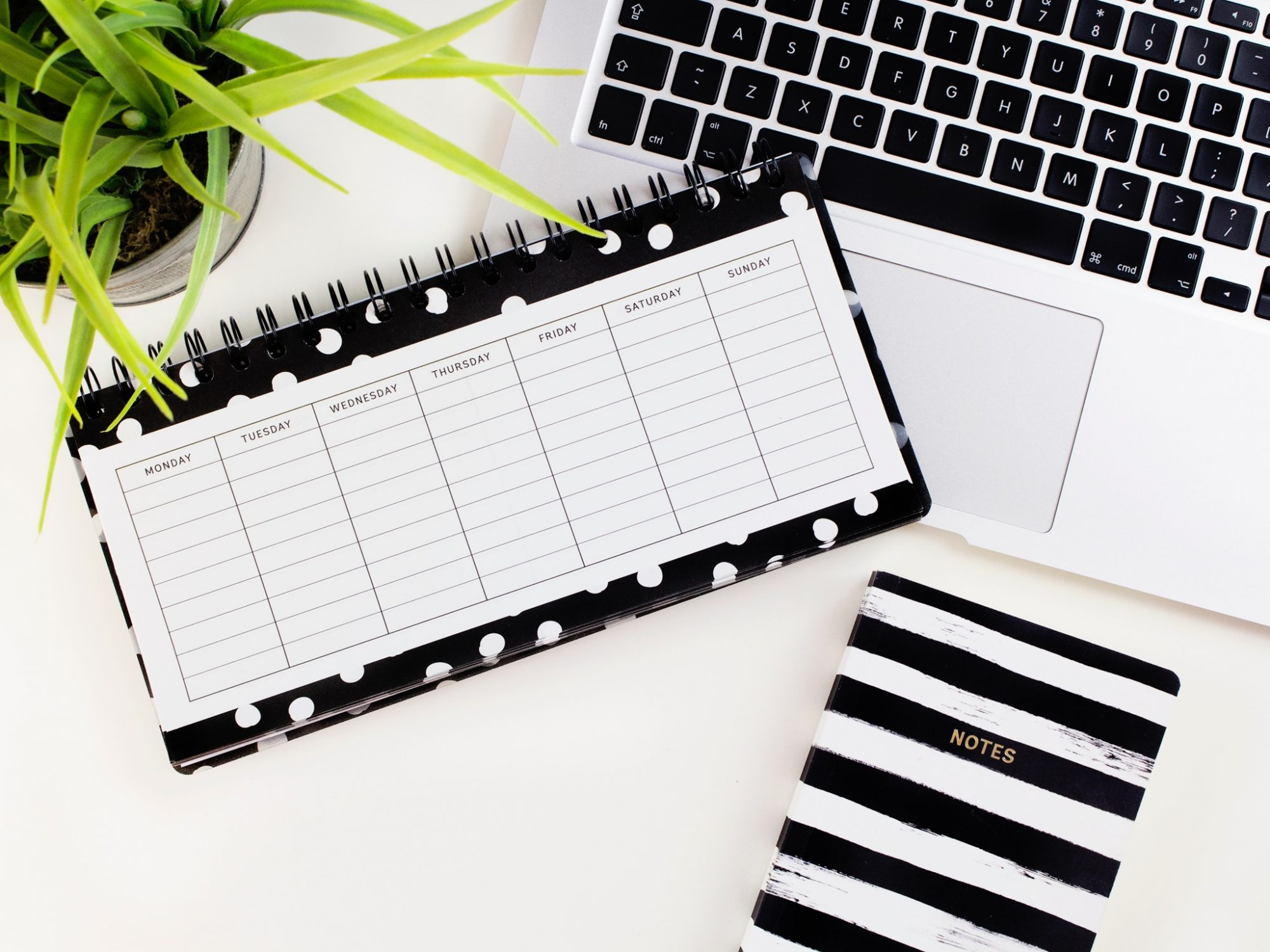 Black and white day planner and calendar